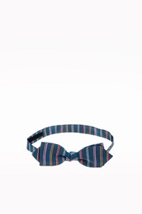 Pagoni Blue Striped Silk Bow Tie