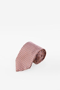 Lanvin Dusty Pink Silk Printed Tie