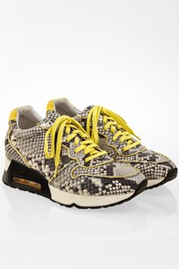 Ash Snake-Print Leather Love Sneakers / Size: 37 - Fit: 37.5